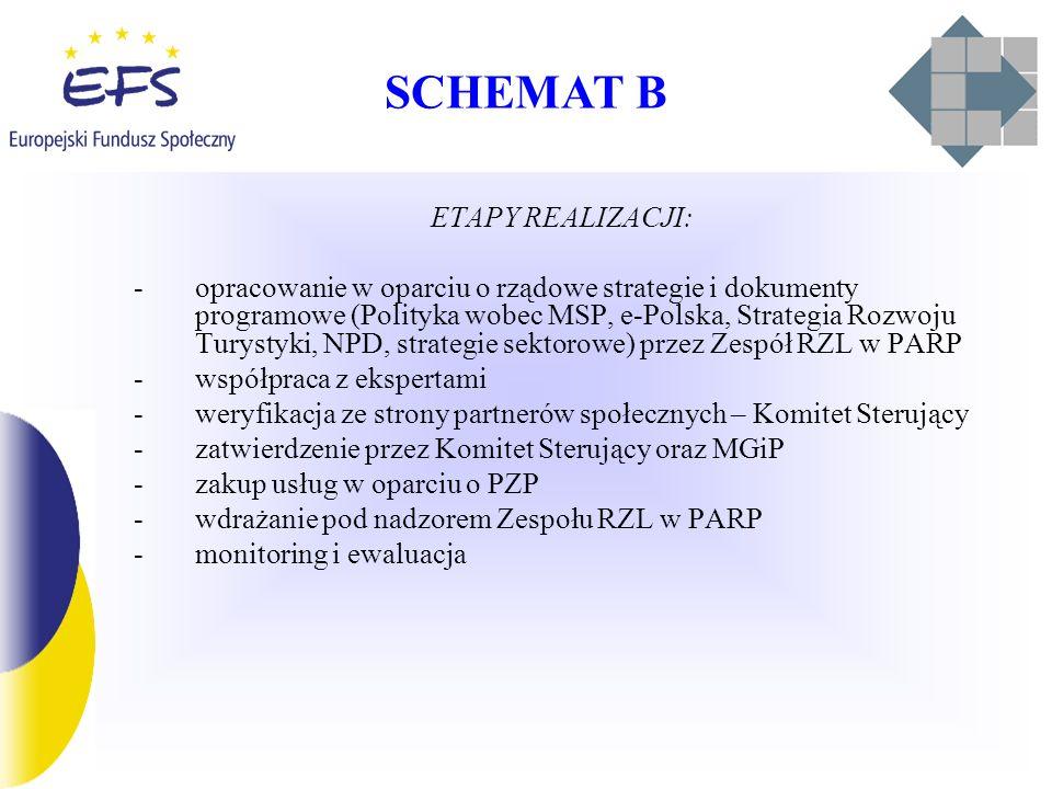 SCHEMAT B ETAPY REALIZACJI: -opracowanie w oparciu o rządowe strategie i dokumenty programowe (Polityka wobec MSP, e-Polska, Strategia Rozwoju Turystyki, NPD, strategie sektorowe) przez Zespół RZL w PARP -współpraca z ekspertami -weryfikacja ze strony partnerów społecznych – Komitet Sterujący -zatwierdzenie przez Komitet Sterujący oraz MGiP -zakup usług w oparciu o PZP -wdrażanie pod nadzorem Zespołu RZL w PARP -monitoring i ewaluacja