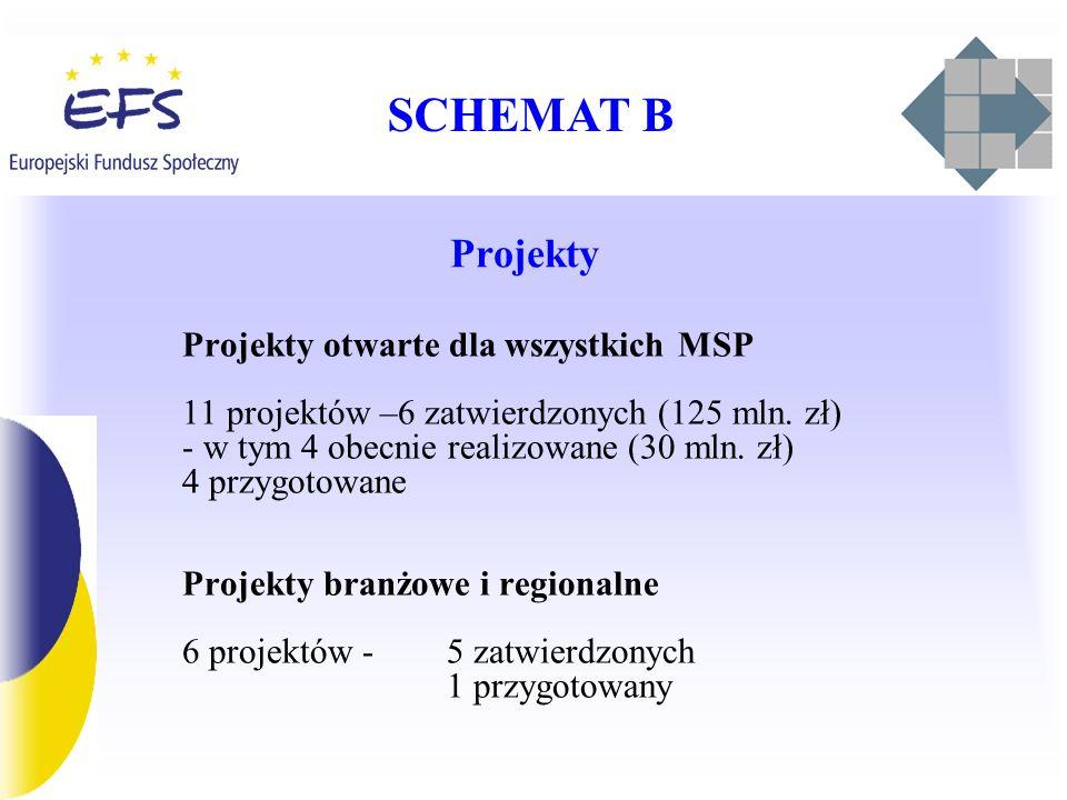 SCHEMAT B Projekty Projekty otwarte dla wszystkich MSP 11 projektów –6 zatwierdzonych (125 mln. zł) - w tym 4 obecnie realizowane (30 mln. zł) 4 przyg