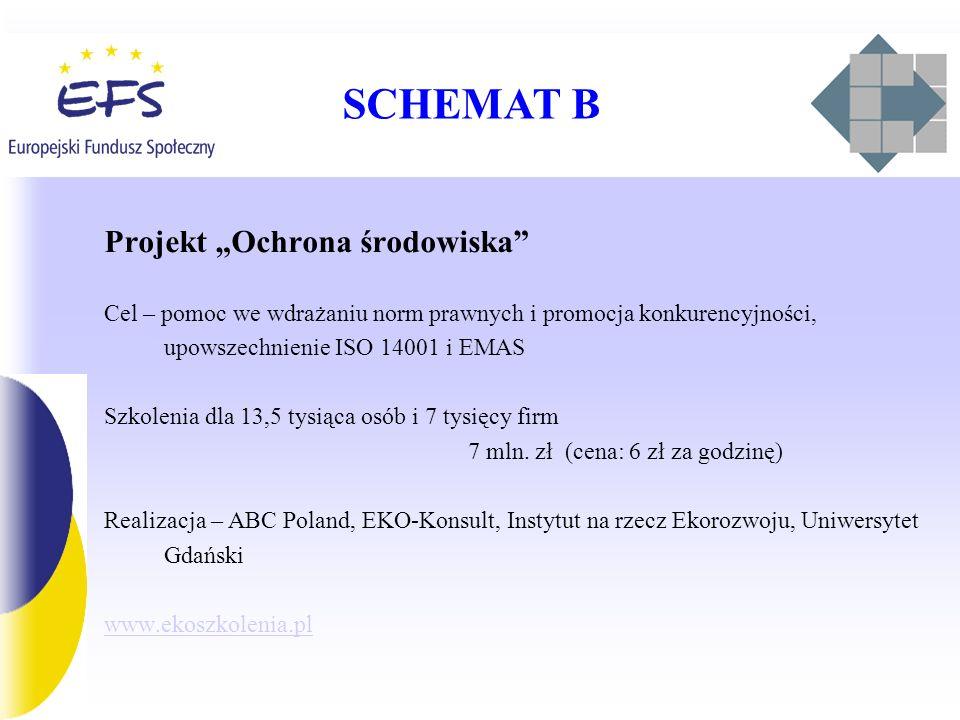 SCHEMAT B Projekt Ochrona środowiska Cel – pomoc we wdrażaniu norm prawnych i promocja konkurencyjności, upowszechnienie ISO 14001 i EMAS Szkolenia dla 13,5 tysiąca osób i 7 tysięcy firm 7 mln.