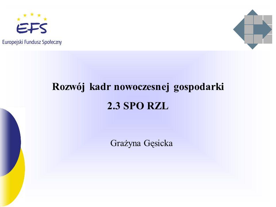 SPO RZL – działanie 2.3 konkursy – najczęściej padające pytania Czy należy finansować szkolenia dużych przedsiębiorstw.