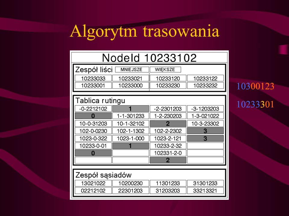Algorytm trasowania 10300123 10233301