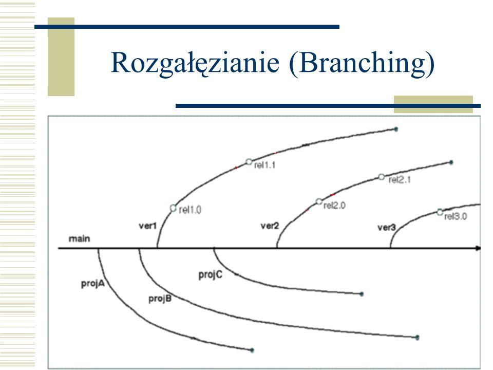 Rozgałęzianie (Branching)