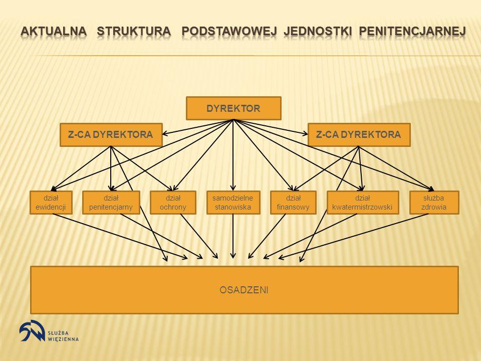DYREKTOR Z-CA DYREKTORA samodzielne stanowiska dział penitencjarny dział ochrony dział ewidencji dział finansowy dział kwatermistrzowski służba zdrowi