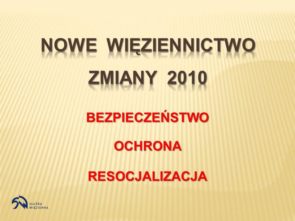 Konieczność reformy spowodowana jest zdiagnozowanymi problemami polskiego więziennictwa przeludnieniem jednostek penitencjarnych samobójstwami, samouszkodzeniami, napaściami na funkcjonariuszy niebezpiecznymi kategoriami osadzonych z przestępczości zorganizowanej i grup ryzyka przestarzałą strukturą organizacyjną więzień ograniczonymi środkami finansowymi w budżecie Państwa