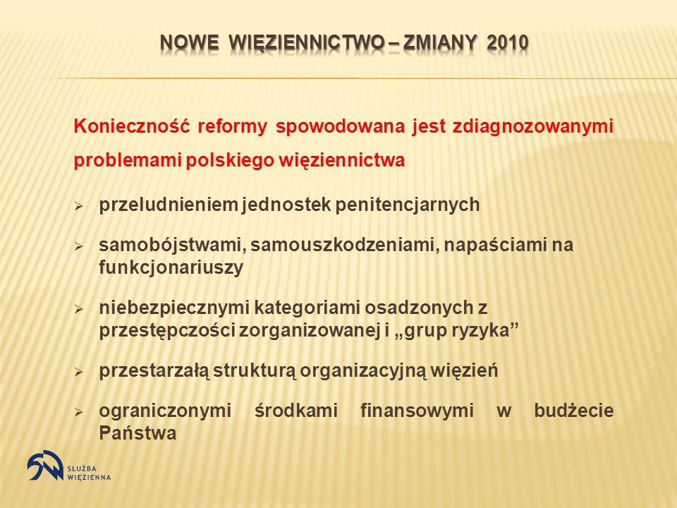 Konieczność reformy spowodowana jest zdiagnozowanymi problemami polskiego więziennictwa przeludnieniem jednostek penitencjarnych samobójstwami, samous