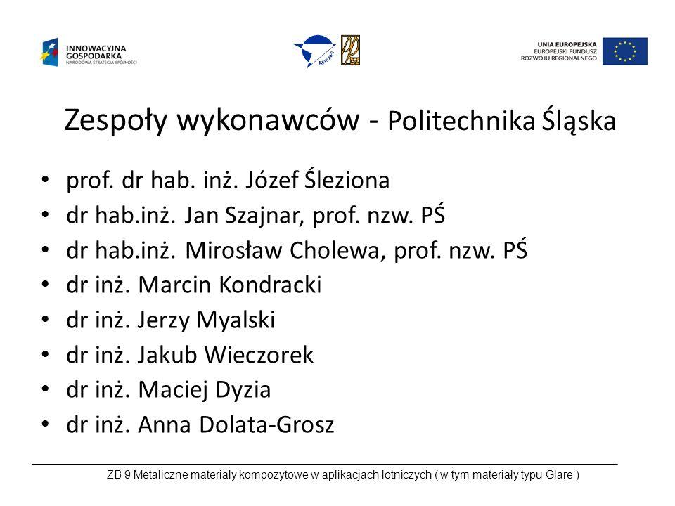 Zespoły wykonawców - Politechnika Śląska prof. dr hab.
