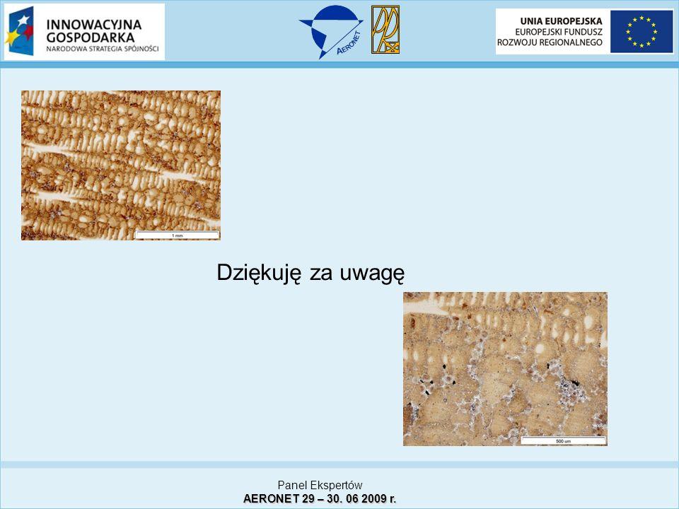 Panel Ekspertów AERONET 29 – 30. 06 2009 r. Dziękuję za uwagę
