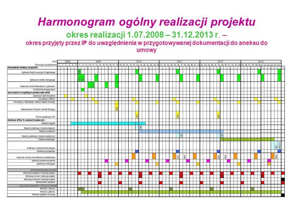 Harmonogram ogólny realizacji projektu okres realizacji 1.07.2008 – 31.12.2013 r. – okres przyjęty przez IP do uwzględnienia w przygotowywanej dokumen