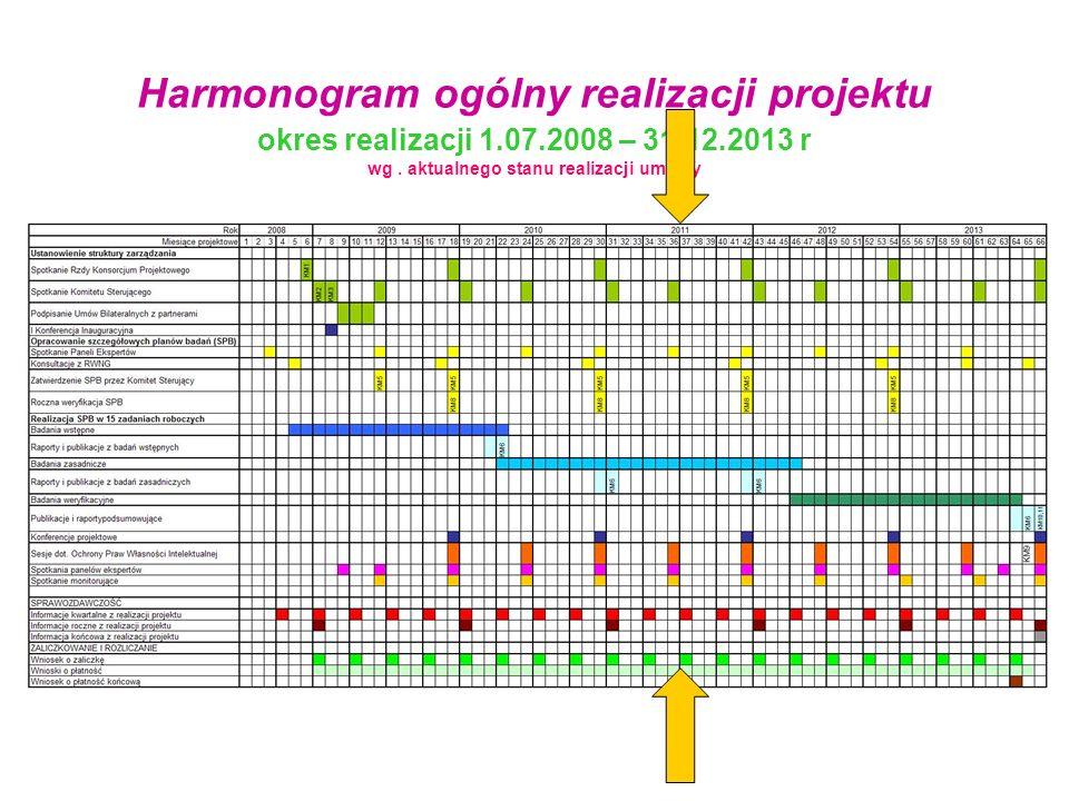 Harmonogram ogólny realizacji projektu okres realizacji 1.07.2008 – 31.12.2013 r wg. aktualnego stanu realizacji umowy