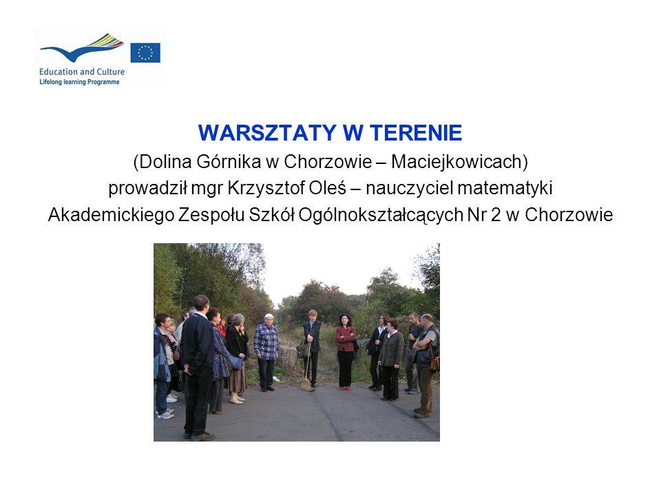 WARSZTATY W TERENIE (Dolina Górnika w Chorzowie – Maciejkowicach) prowadził mgr Krzysztof Oleś – nauczyciel matematyki Akademickiego Zespołu Szkół Ogó