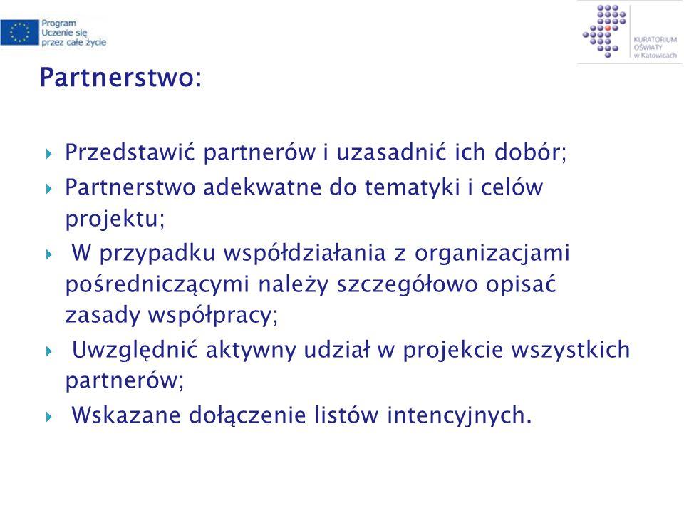 Partnerstwo: Przedstawić partnerów i uzasadnić ich dobór; Partnerstwo adekwatne do tematyki i celów projektu; W przypadku współdziałania z organizacjami pośredniczącymi należy szczegółowo opisać zasady współpracy; Uwzględnić aktywny udział w projekcie wszystkich partnerów; Wskazane dołączenie listów intencyjnych.