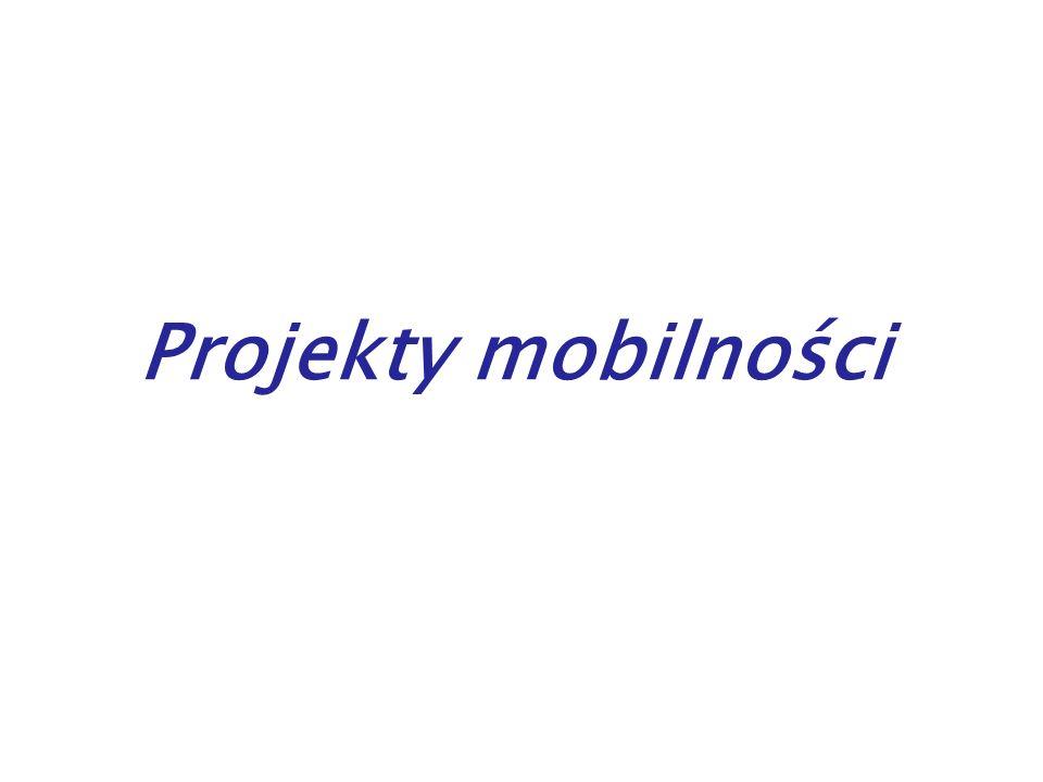 Projekty mobilności – formy: Wyjazdy zagraniczne na określony czas w celu: szkolenia i zdobywania praktycznego doświadczenia zawodowego przez uczestnika projektu w organizacji partnerskiej w innym kraju, w ramach współpracy między instytucjami wysyłającymi i przedsiębiorstwami Staże dla uczniów szkół zawodowych (IVT)