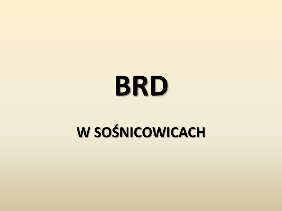 BRD W SOŚNICOWICACH