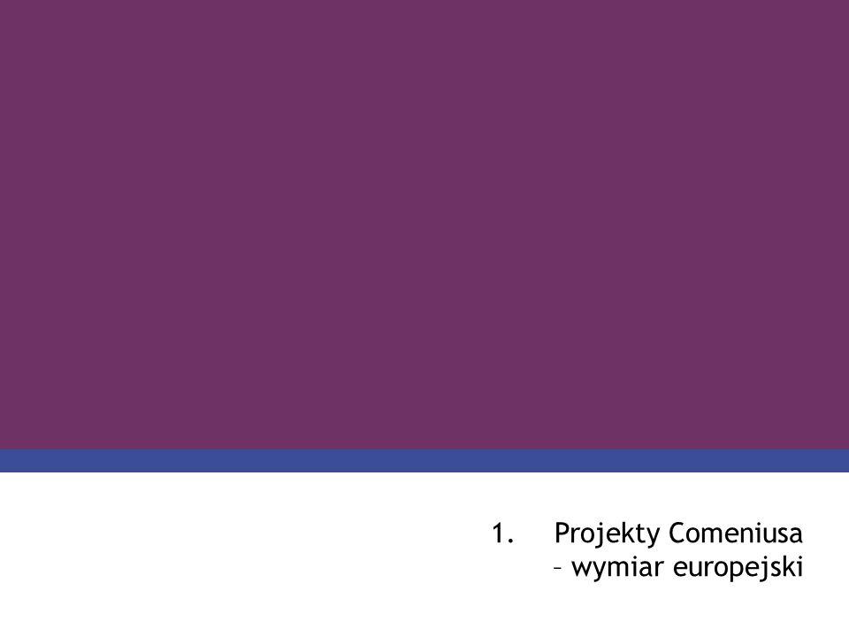 PROGRAM COMENIUS 1.Projekty Comeniusa – wymiar europejski