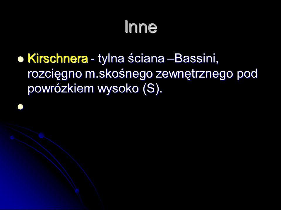 Inne Kirschnera - tylna ściana –Bassini, rozcięgno m.skośnego zewnętrznego pod powrózkiem wysoko (S). Kirschnera - tylna ściana –Bassini, rozcięgno m.