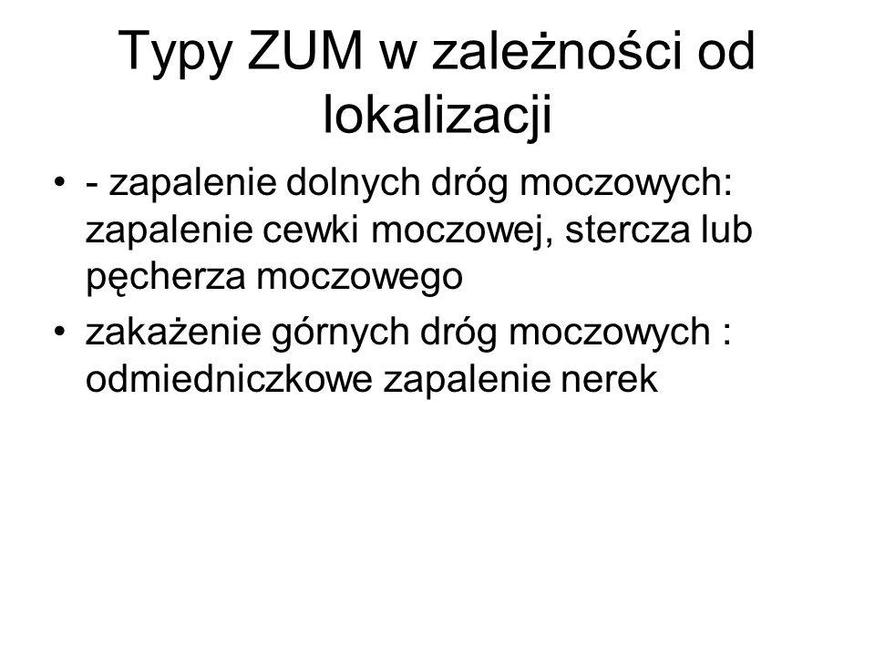 Typy ZUM w zależności od lokalizacji - zapalenie dolnych dróg moczowych: zapalenie cewki moczowej, stercza lub pęcherza moczowego zakażenie górnych dr