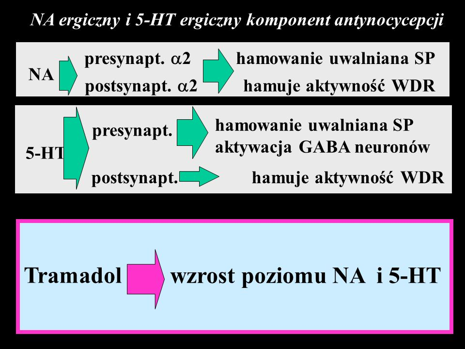 NA presynapt.2 hamowanie uwalniana SP postsynapt.