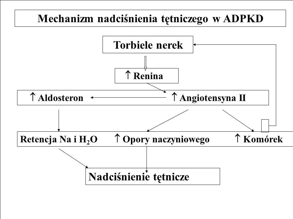 Mechanizm nadciśnienia tętniczego w ADPKD Torbiele nerek Renina Aldosteron Angiotensyna II Retencja Na i H 2 O Opory naczyniowego Komórek Nadciśnienie