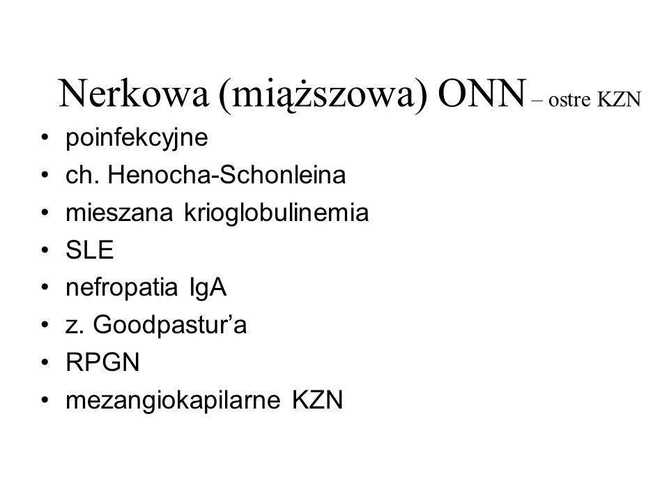 Nerkowa (miąższowa) ONN – ostre KZN poinfekcyjne ch. Henocha-Schonleina mieszana krioglobulinemia SLE nefropatia IgA z. Goodpastura RPGN mezangiokapil