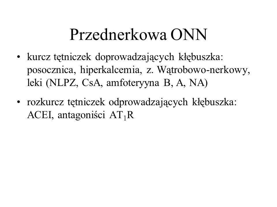 Przednerkowa ONN kurcz tętniczek doprowadzających kłębuszka: posocznica, hiperkalcemia, z.