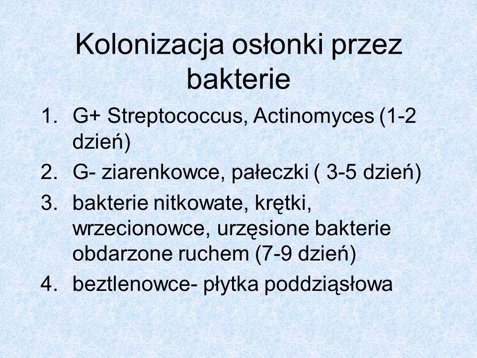 Mikroorganizmy w obrębie biofilmu