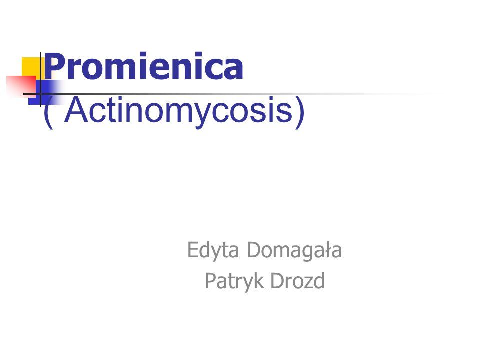 Promienica ( Actinomycosis) Edyta Domagała Patryk Drozd