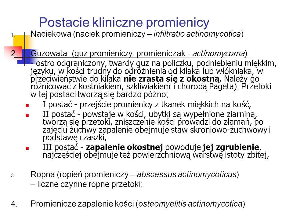 2.Antybiotykoterapia Leki z wyboru:Penicylina (!) Ampicylina Amoksycylina Przy p/wsk:Linkozamidy Makrolidy (erytromycyna/ klarytromycyna/ azytromycyna) A także:Metronidazol Ponieważ zakażenie ma charakter wieloczynnikowy i mamy do czynienia z florą bakteryjną mieszaną, wskazanym jest prowadzenie antybiotykoterapii skojarzonej poprzez dodanie: Aminoglikozydów:Amikacyna Tobramycyna Wielkość dawki zależy od postaci, W postaciach o ciężkim przebiegu – parenteralne podanie dużych dawek (3-14 dni); Po wypisaniu pacjenta ze szpitala zaleca się doustne przyjmowanie (3 miesiące).