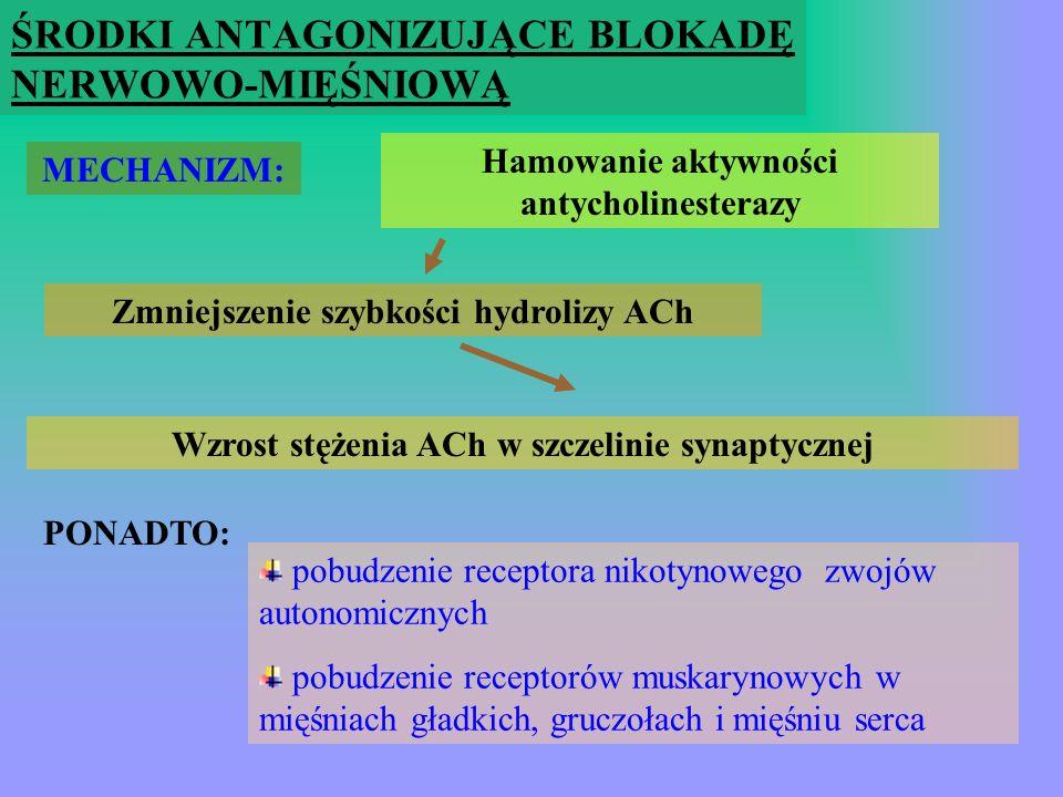 ŚRODKI NIEDEPOLARYZUJĄCE Wekuronium (N o r k u r o n) aminosteroid Intubacja : 0,08 – 0,1 mg/kg mc Podtrz: 0,02 – 0,03 mg/kg mc Wlew: 1 – 2 ug/kg mc /