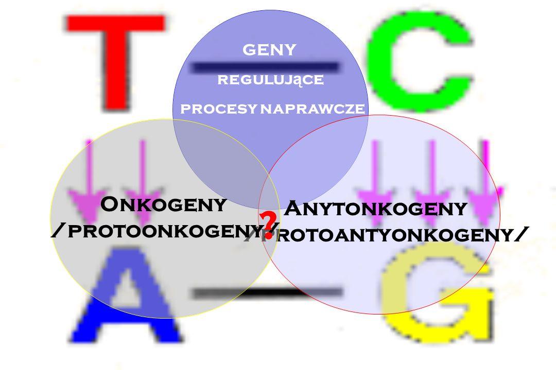 Rak jest chorob ą genetyczn ą