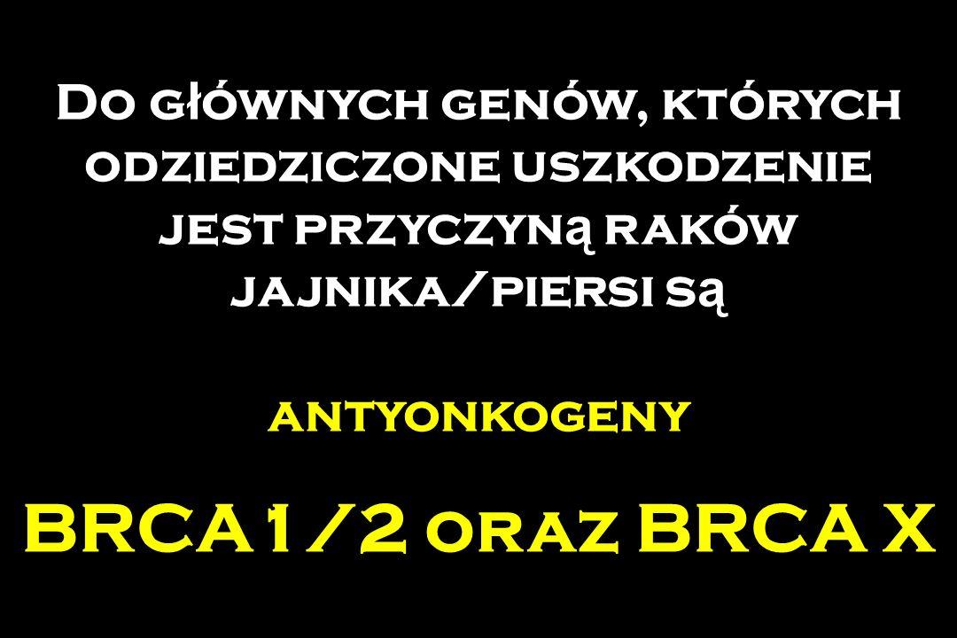 Do g ł ównych genów, których odziedziczone uszkodzenie jest przyczyn ą raków jajnika/piersi s ą antyonkogeny BRCA1/2 oraz BRCA X