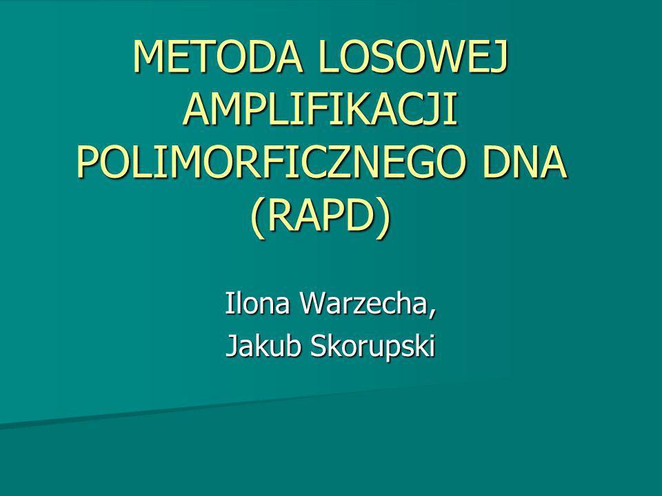 METODA LOSOWEJ AMPLIFIKACJI POLIMORFICZNEGO DNA (RAPD) Ilona Warzecha, Jakub Skorupski