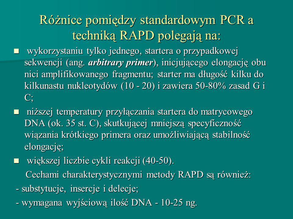 Różnice pomiędzy standardowym PCR a techniką RAPD polegają na: wykorzystaniu tylko jednego, startera o przypadkowej sekwencji (ang. arbitrary primer),