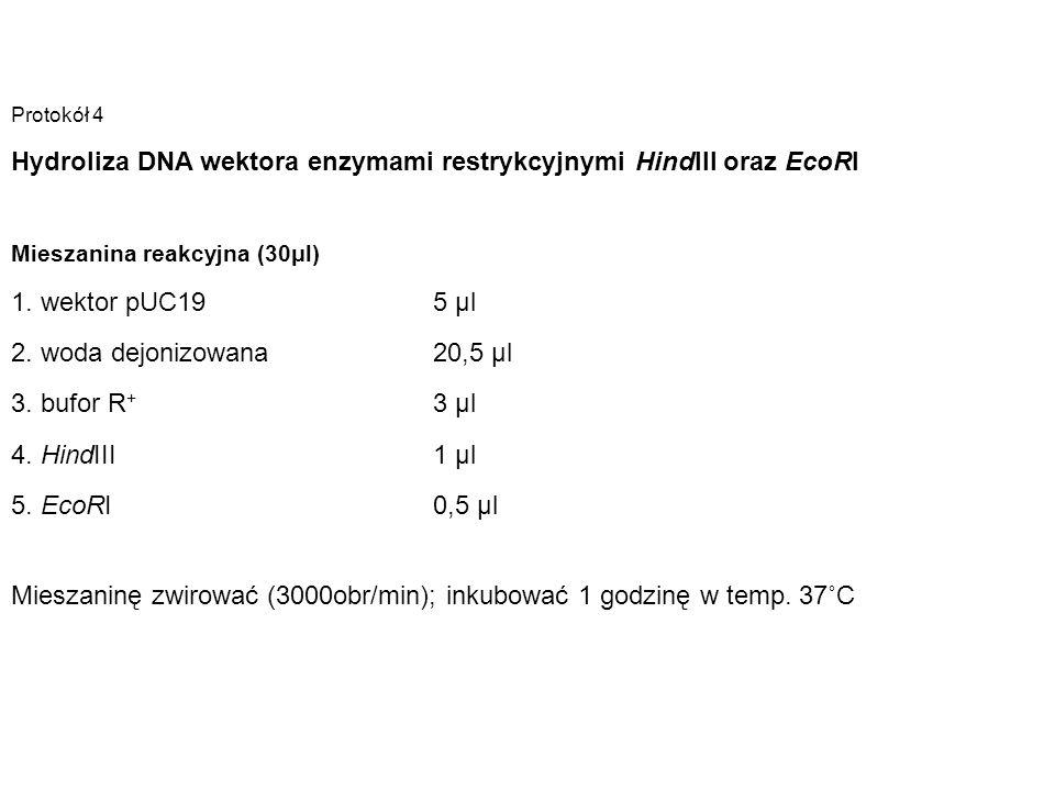 Protokół 4 Hydroliza DNA wektora enzymami restrykcyjnymi HindIII oraz EcoRI Mieszanina reakcyjna (30μl) 1. wektor pUC19 5 µl 2. woda dejonizowana 20,5