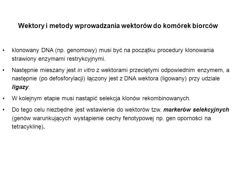 Wektory i metody wprowadzania wektorów do komórek biorców klonowany DNA (np. genomowy) musi być na początku procedury klonowania strawiony enzymami re