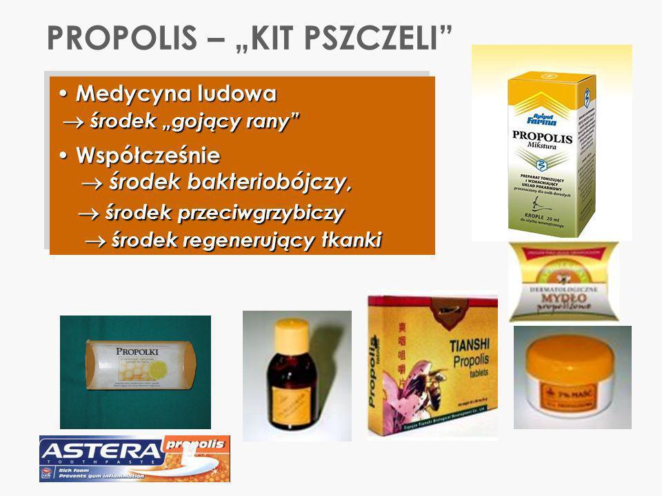 PROPOLIS – KIT PSZCZELI Medycyna ludowa Medycyna ludowa środek gojący rany środek gojący rany Współcześnie Współcześnie środek bakteriobójczy, środek