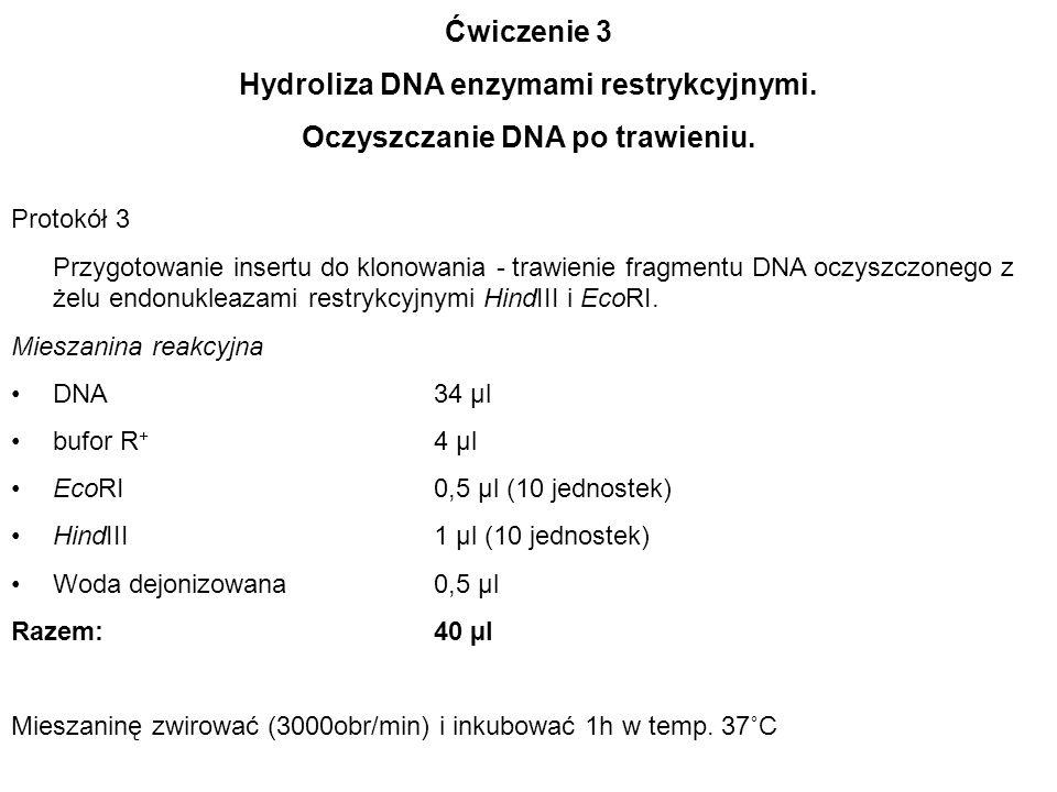 Ćwiczenie 3 Hydroliza DNA enzymami restrykcyjnymi. Oczyszczanie DNA po trawieniu. Protokół 3 Przygotowanie insertu do klonowania - trawienie fragmentu