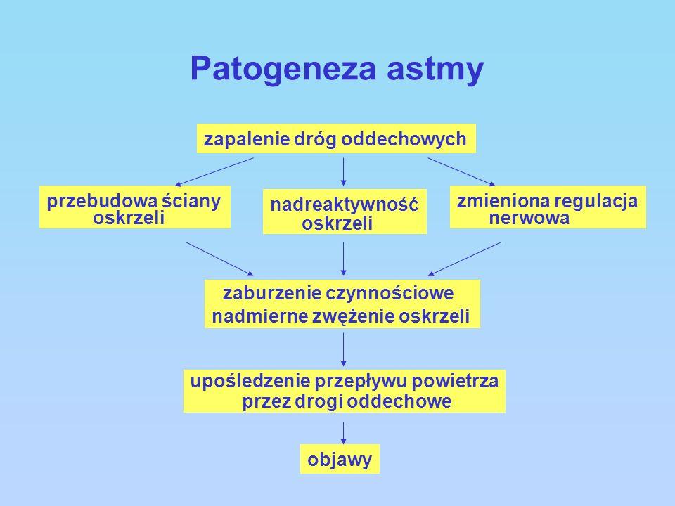 Patogeneza astmy zapalenie dróg oddechowych przebudowa ściany oskrzeli nadreaktywność oskrzeli zaburzenie czynnościowe nadmierne zwężenie oskrzeli upo
