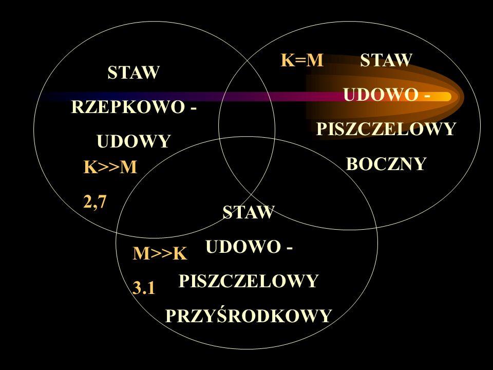STAW RZEPKOWO - UDOWY STAW UDOWO - PISZCZELOWY BOCZNY STAW UDOWO - PISZCZELOWY PRZYŚRODKOWY K>>M 2,7 M>>K 3.1 K=M