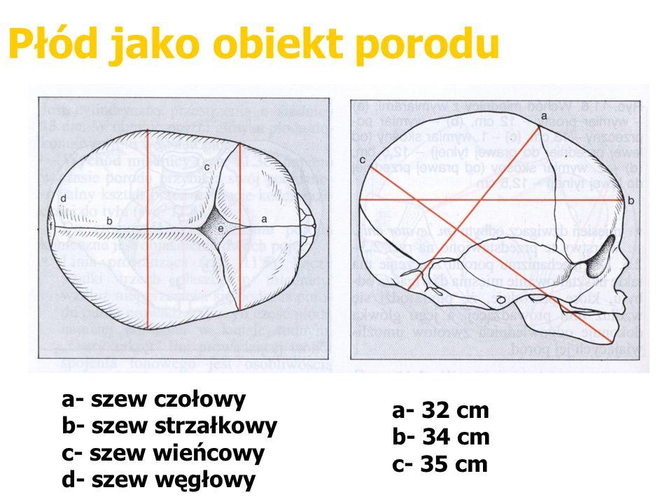 Płód jako obiekt porodu a- 32 cm b- 34 cm c- 35 cm a- szew czołowy b- szew strzałkowy c- szew wieńcowy d- szew węgłowy