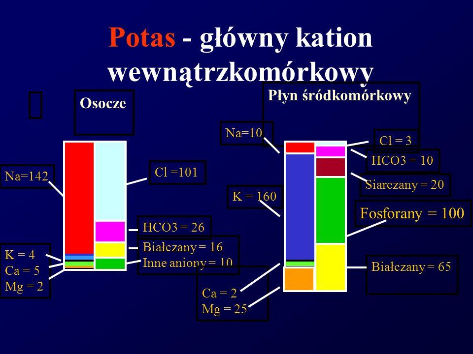 Potas - główny kation wewnątrzkomórkowy Na=142 K = 4 Ca = 5 Mg = 2 Cl =101 HCO3 = 26 Białczany = 16 Inne aniony = 10 Osocze Płyn śródkomórkowy Na=10 C