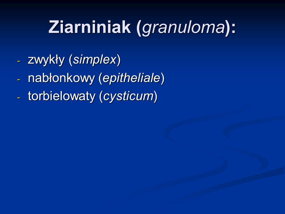 Ziarniniak (granuloma): - zwykły (simplex) - nabłonkowy (epitheliale) - torbielowaty (cysticum)
