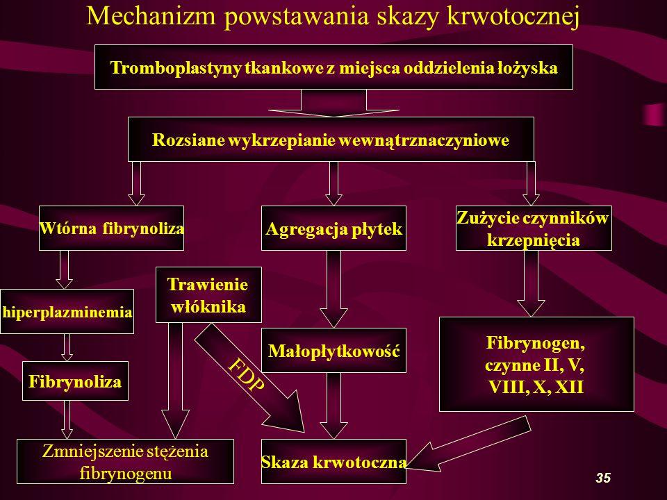 35 Mechanizm powstawania skazy krwotocznej Tromboplastyny tkankowe z miejsca oddzielenia łożyska Rozsiane wykrzepianie wewnątrznaczyniowe Wtórna fibrynoliza Agregacja płytek Zużycie czynników krzepnięcia Skaza krwotoczna Małopłytkowość Fibrynogen, czynne II, V, VIII, X, XII hiperplazminemia Fibrynoliza Zmniejszenie stężenia fibrynogenu Trawienie włóknika FDP