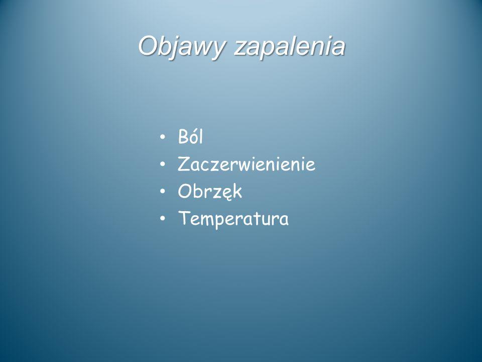 Objawy zapalenia Ból Zaczerwienienie Obrzęk Temperatura