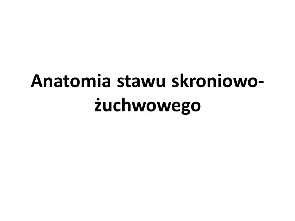 Anatomia stawu skroniowo- żuchwowego