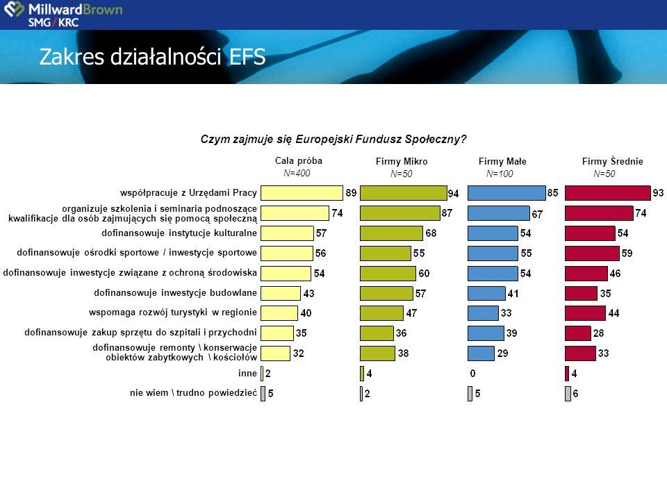 Czym zajmuje się Europejski Fundusz Społeczny.