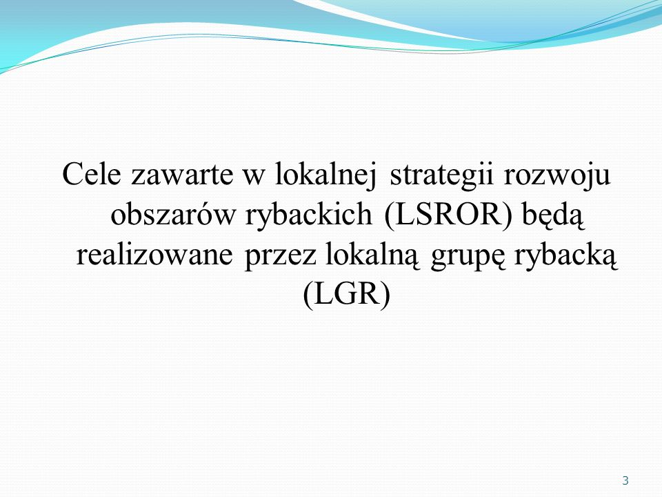 Cele zawarte w lokalnej strategii rozwoju obszarów rybackich (LSROR) będą realizowane przez lokalną grupę rybacką (LGR) 3