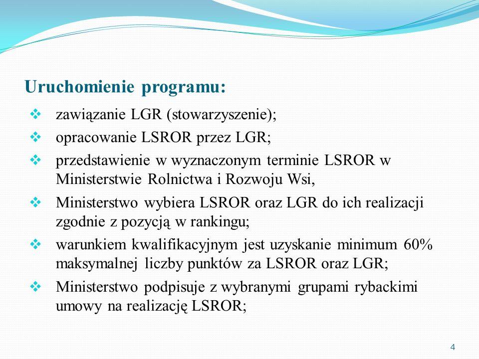 Uruchomienie programu: zawiązanie LGR (stowarzyszenie); opracowanie LSROR przez LGR; przedstawienie w wyznaczonym terminie LSROR w Ministerstwie Rolni