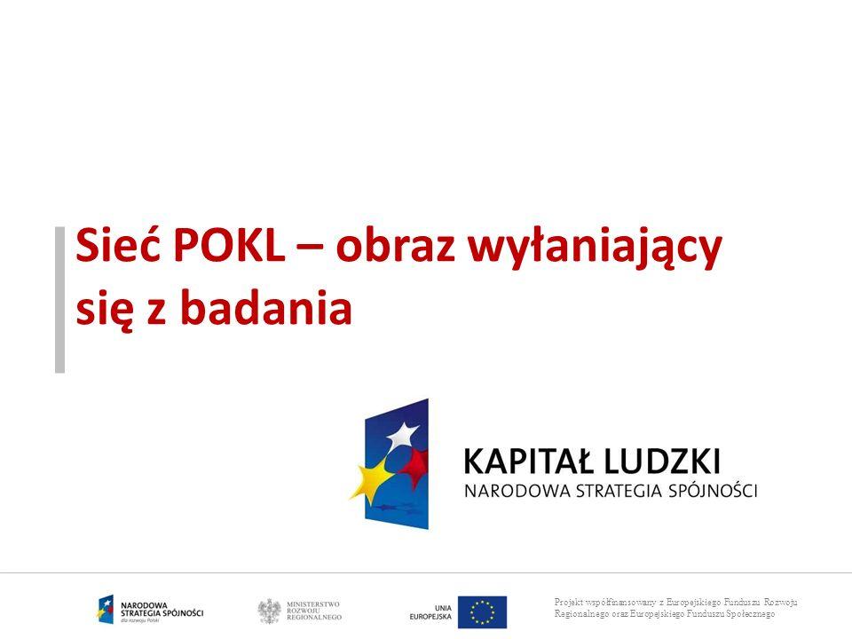 Projekt współfinansowany z Europejskiego Funduszu Rozwoju Regionalnego oraz Europejskiego Funduszu Społecznego Sieć POKL – obraz wyłaniający się z bad