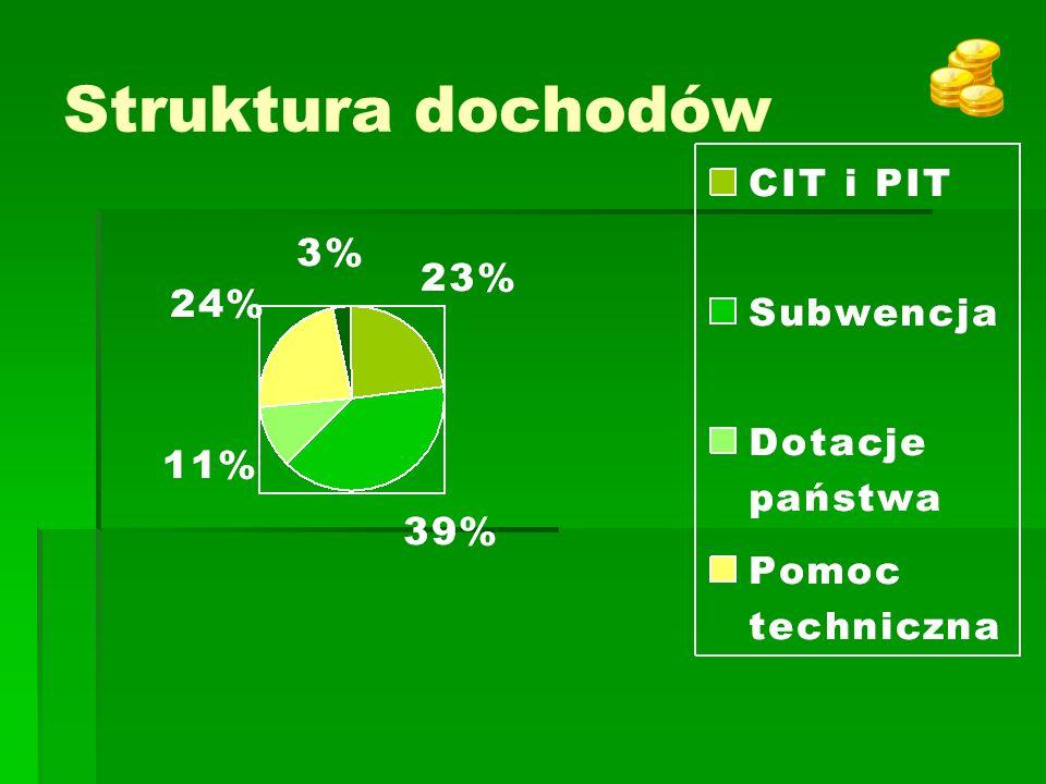 Struktura dochodów