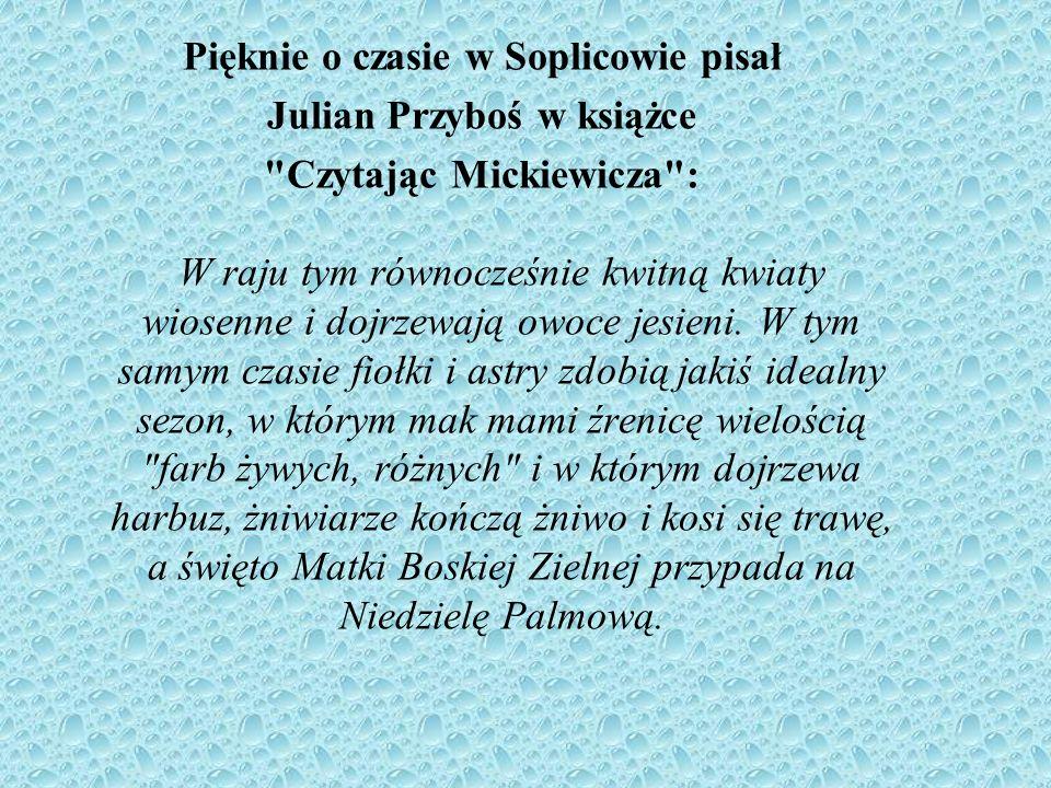 Pięknie o czasie w Soplicowie pisał Julian Przyboś w książce